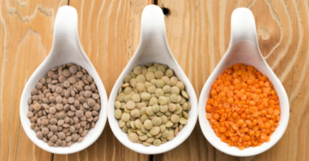 Top 7 sources of plant based protein